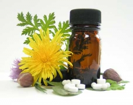 Herbals Act Like Medicines in the Body